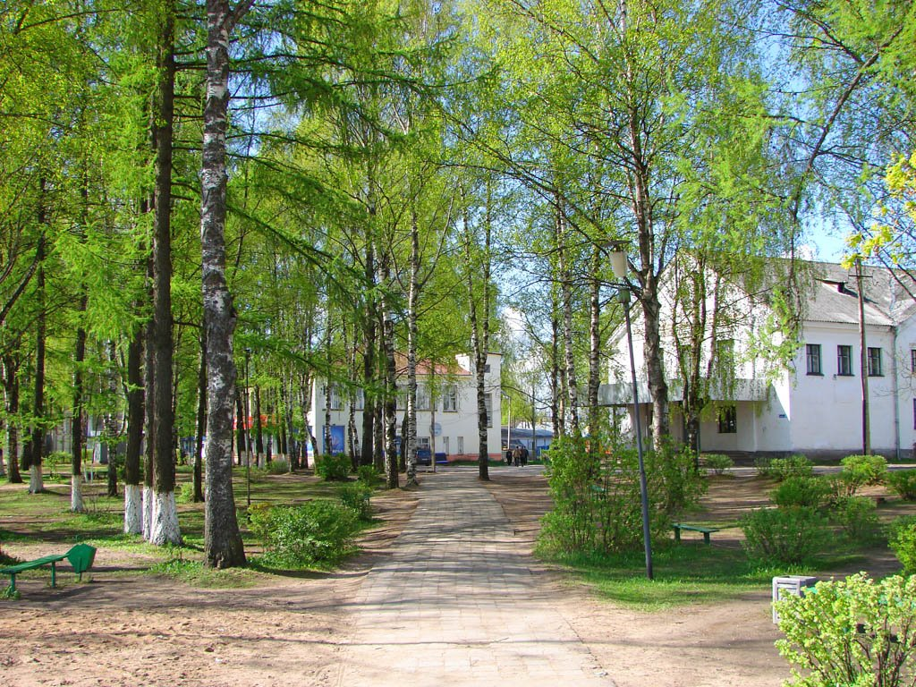 Фотографии Пестово Новгородской области